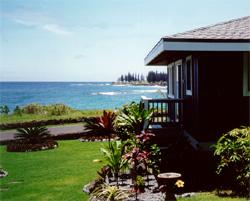 hana ocean front cottage hana mauii vacation rental rh bestbnb com hana maui cottage rentals maui cabin rentals